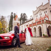 Wedding photo from Chateau Heralec, Czech Republic