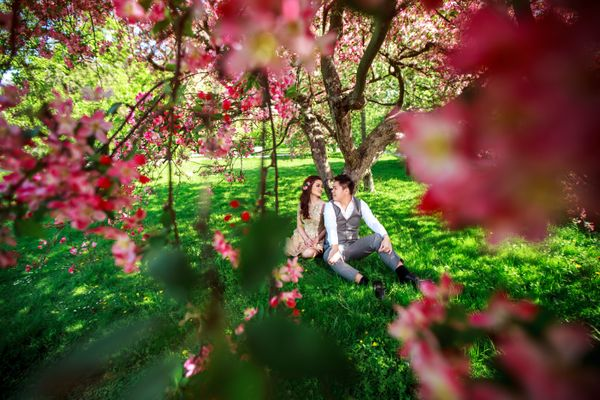 Lovely couple under the blossom tree in Prague